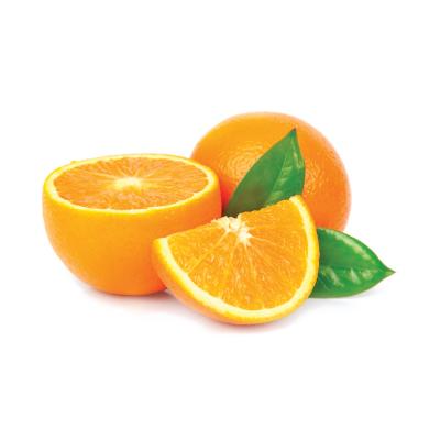 Speedy arancio Di Gel