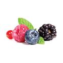 Speedy frutti di bosco Di Gel